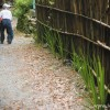 竹の子をとり終えた老人